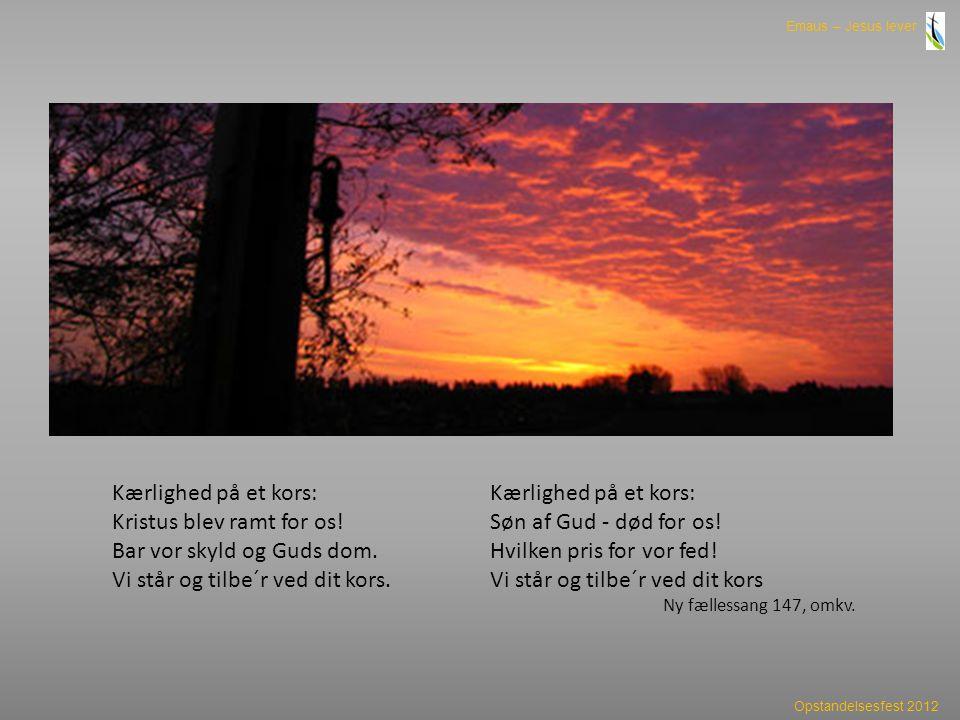 Kristus blev ramt for os! Bar vor skyld og Guds dom.
