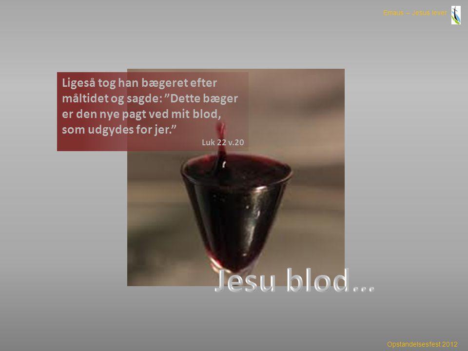 Ligeså tog han bægeret efter måltidet og sagde: Dette bæger er den nye pagt ved mit blod, som udgydes for jer.