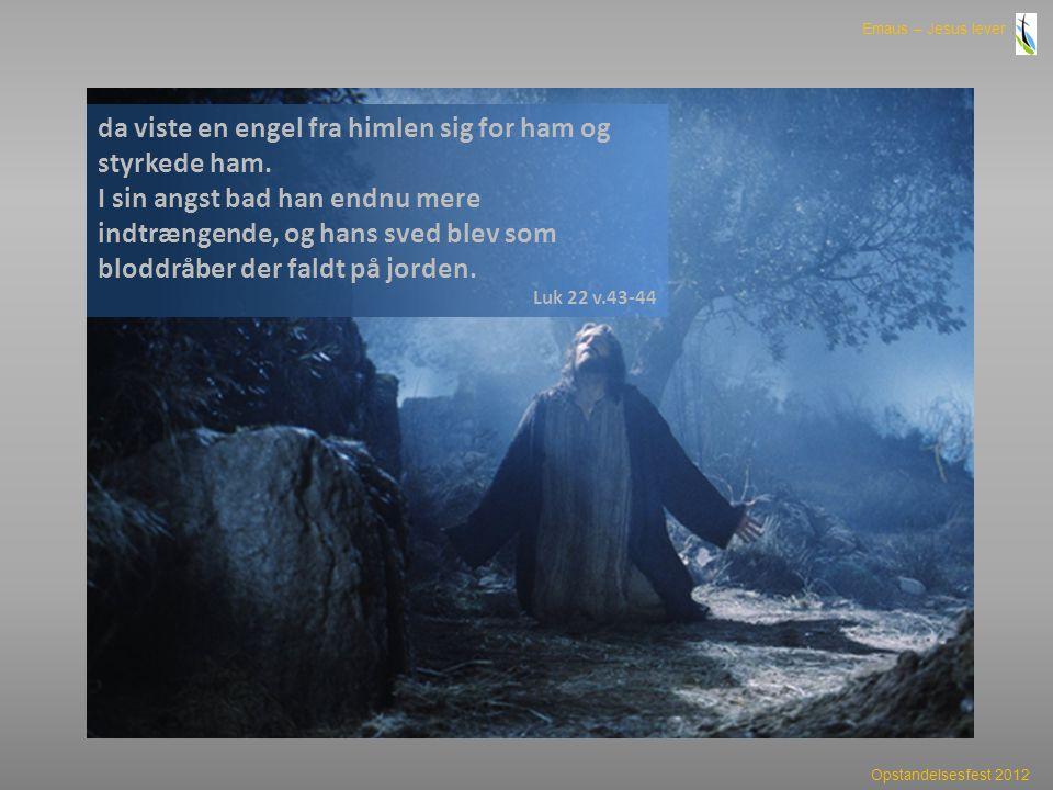da viste en engel fra himlen sig for ham og styrkede ham.