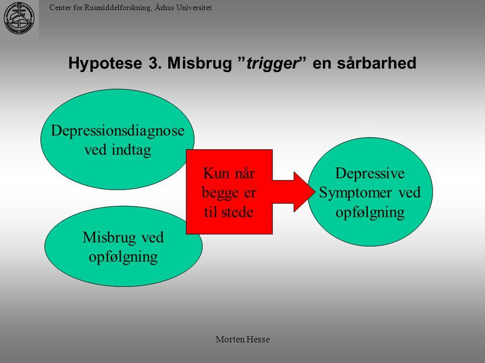 Hypotese 3. Misbrug trigger en sårbarhed