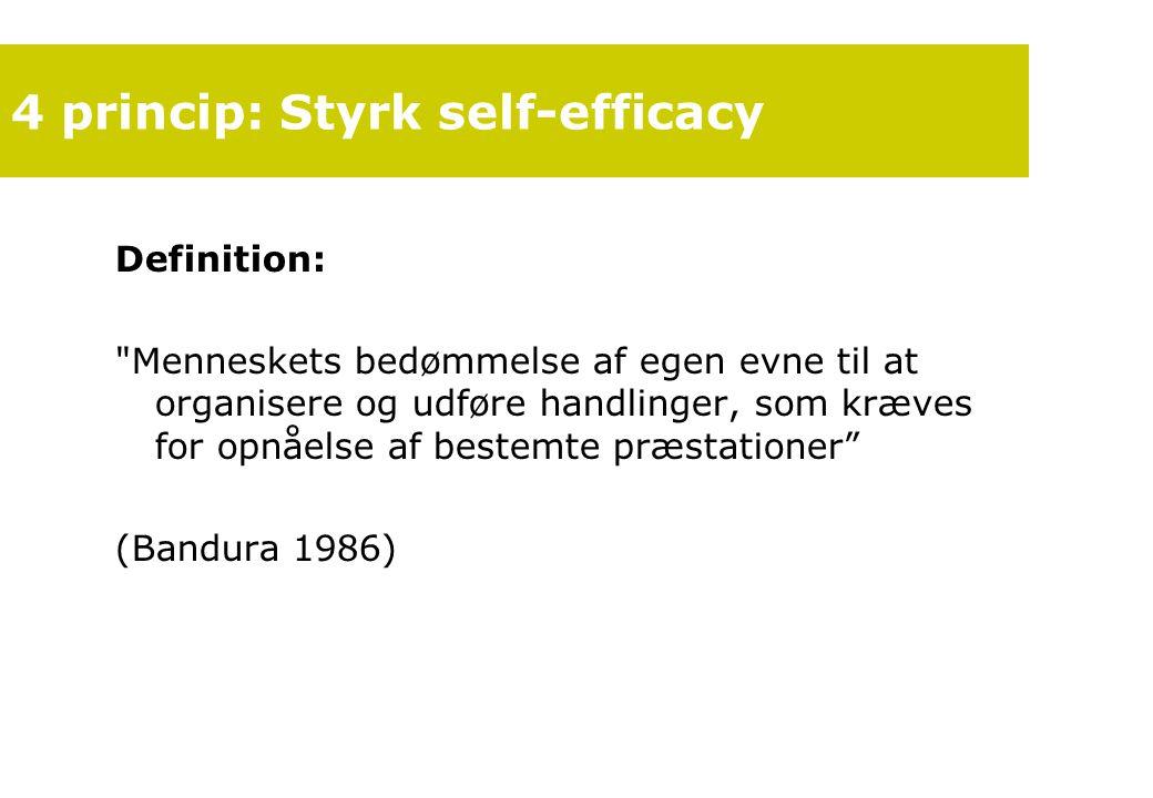 4 princip: Styrk self-efficacy
