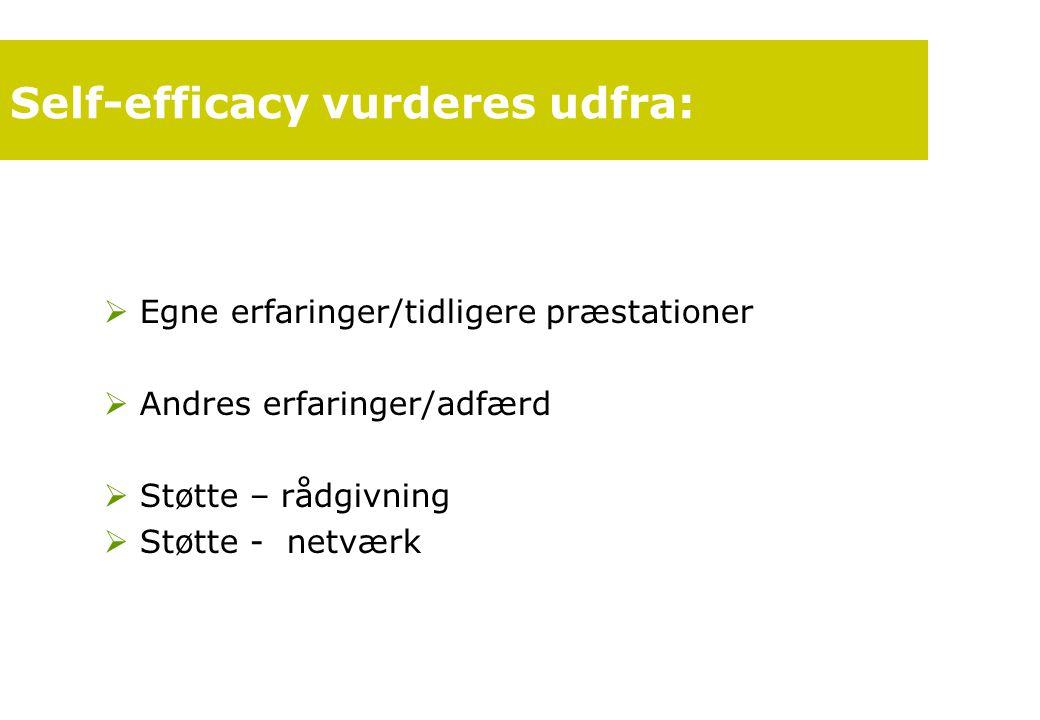 Self-efficacy vurderes udfra: