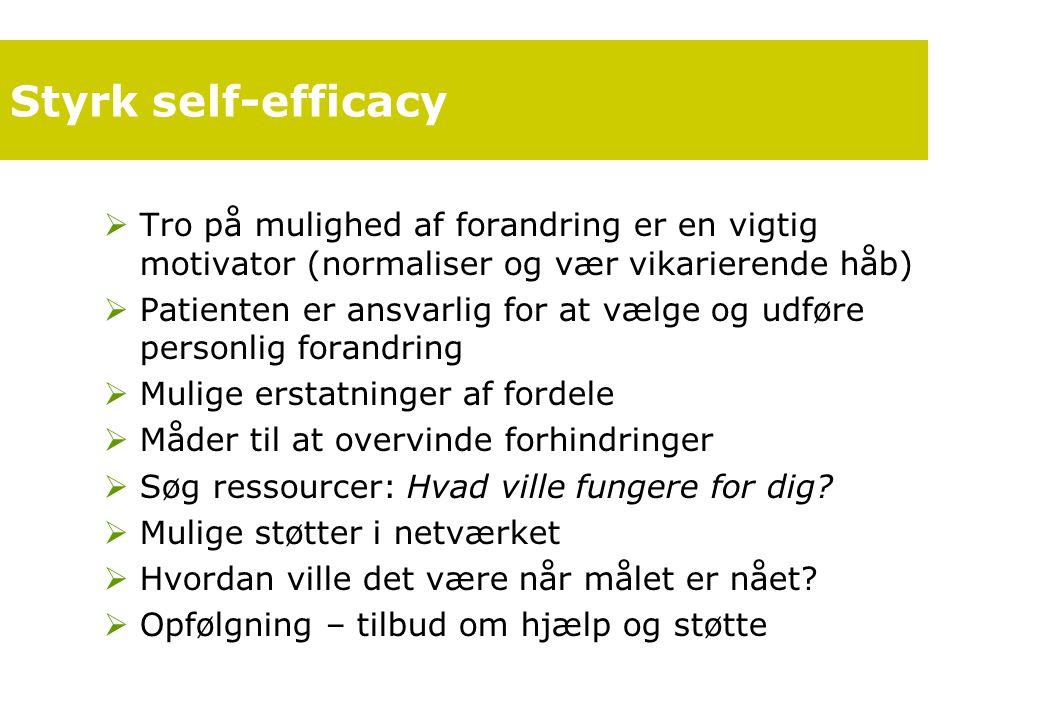 Styrk self-efficacy Tro på mulighed af forandring er en vigtig motivator (normaliser og vær vikarierende håb)