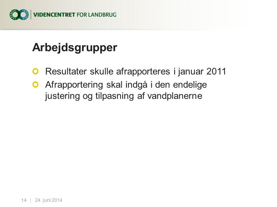 Arbejdsgrupper Resultater skulle afrapporteres i januar 2011
