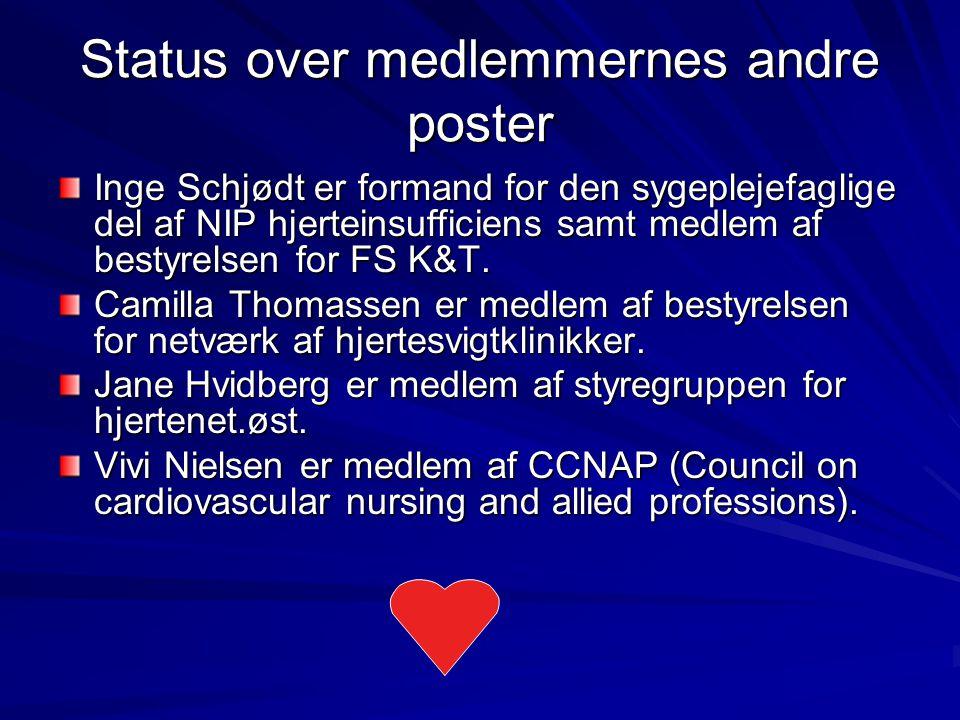 Status over medlemmernes andre poster