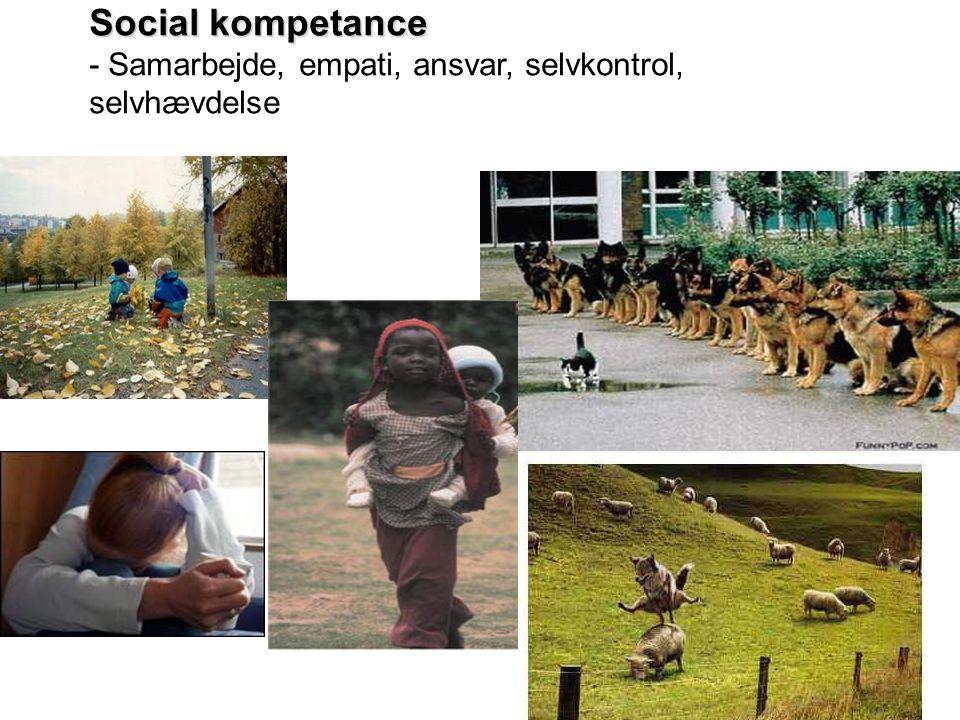 Social kompetance - Samarbejde, empati, ansvar, selvkontrol, selvhævdelse