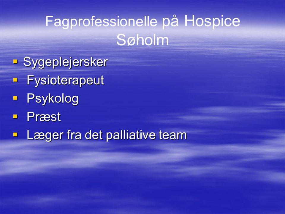 Fagprofessionelle på Hospice Søholm