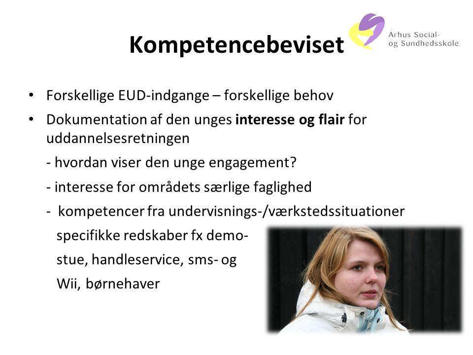 Kompetencebeviset Forskellige EUD-indgange – forskellige behov