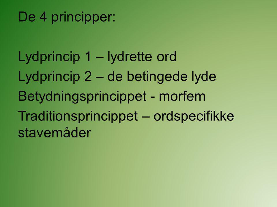 De 4 principper: Lydprincip 1 – lydrette ord. Lydprincip 2 – de betingede lyde. Betydningsprincippet - morfem.