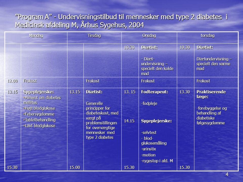 Program A - Undervisningstilbud til mennesker med type 2 diabetes i Medicinsk afdeling M, Århus Sygehus, 2004