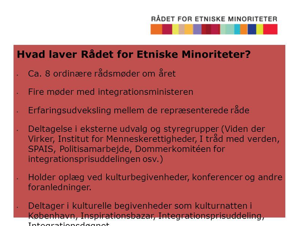 Hvad laver Rådet for Etniske Minoriteter