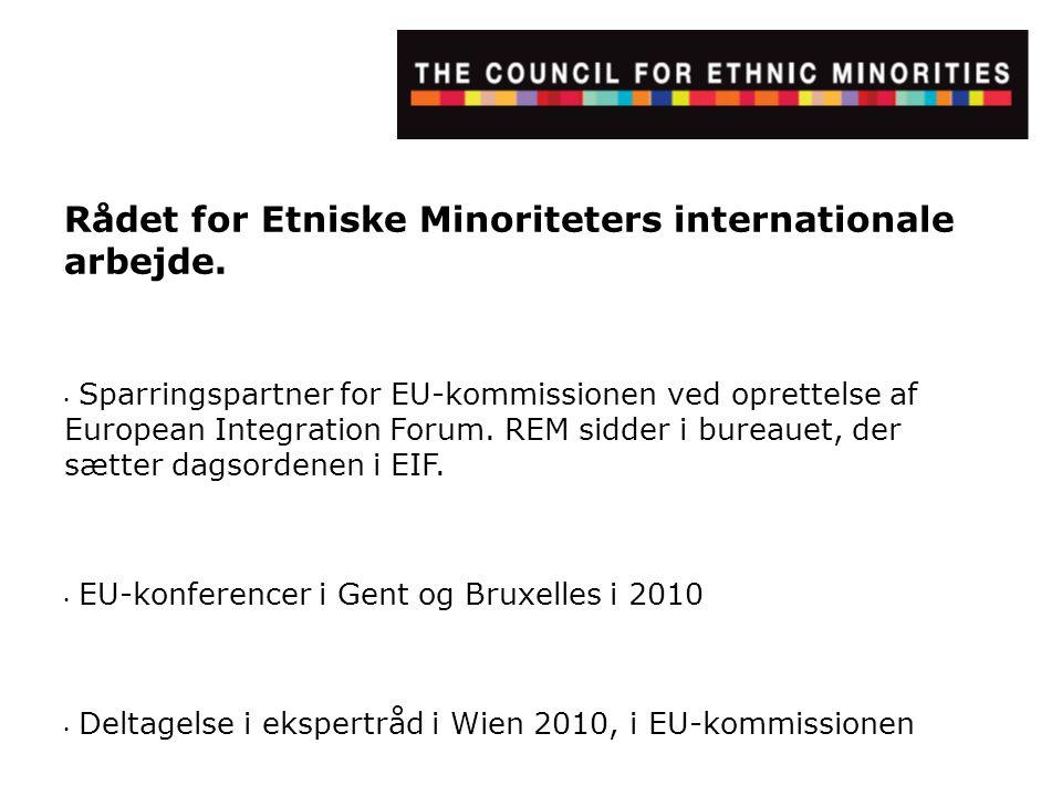 Rådet for Etniske Minoriteters internationale arbejde.