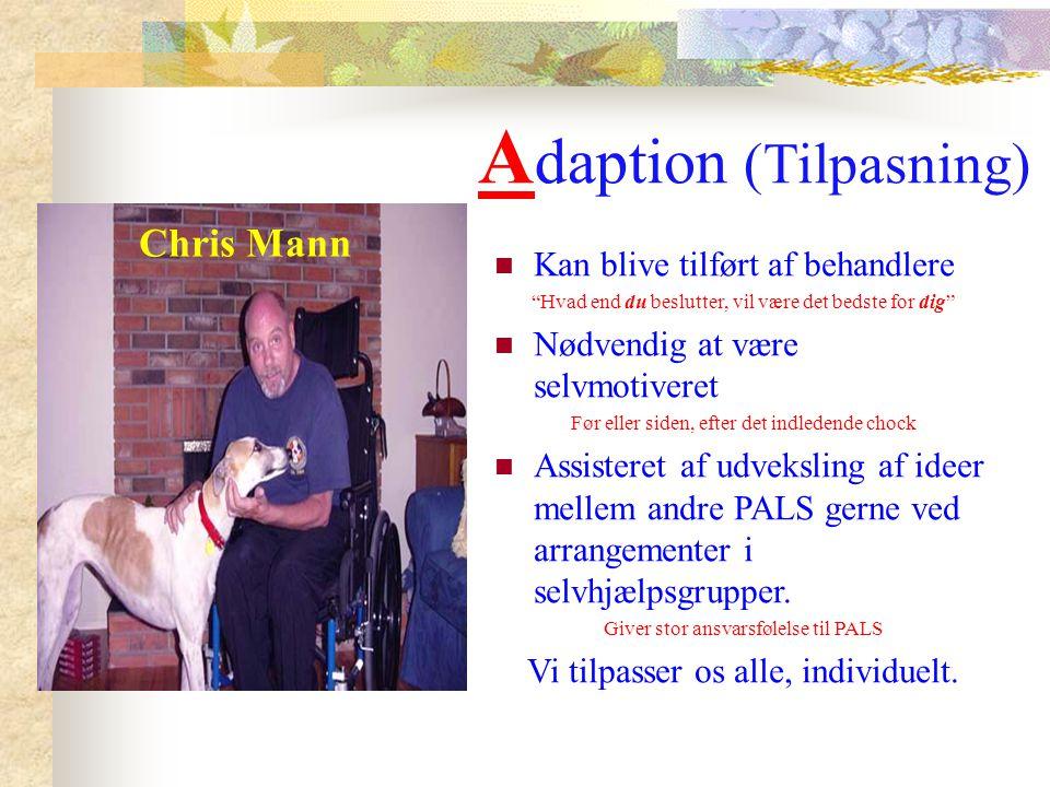 Adaption (Tilpasning)