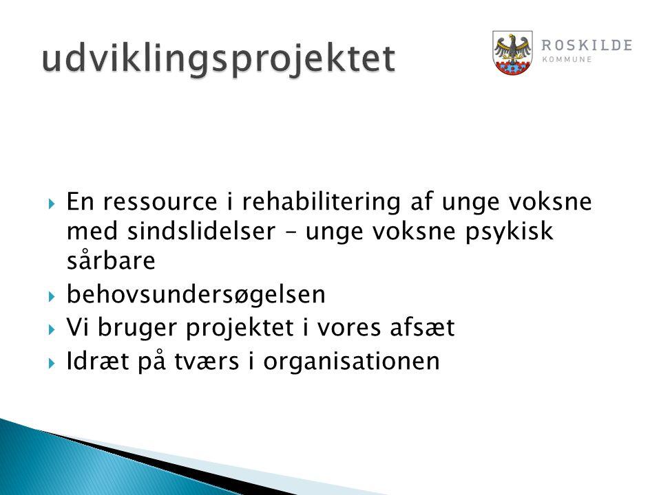 udviklingsprojektet En ressource i rehabilitering af unge voksne med sindslidelser – unge voksne psykisk sårbare.