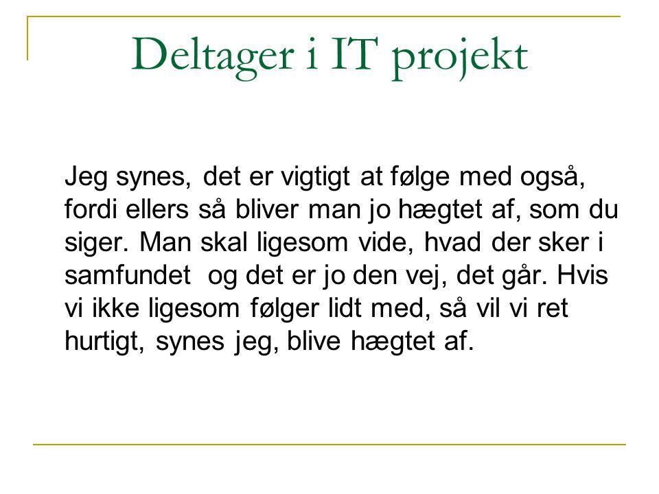 Deltager i IT projekt