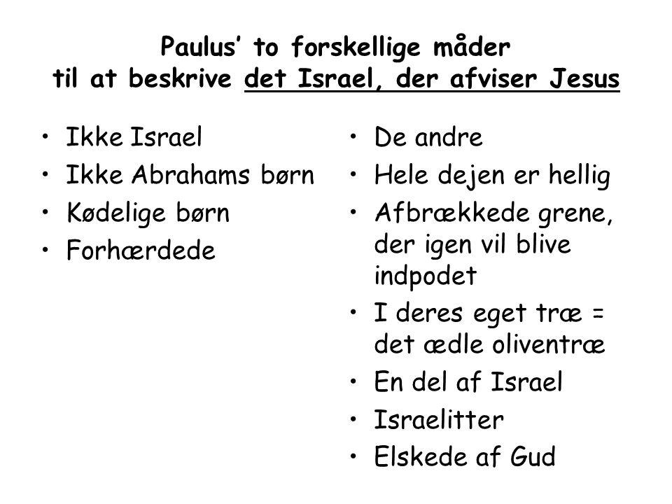 Paulus' to forskellige måder til at beskrive det Israel, der afviser Jesus