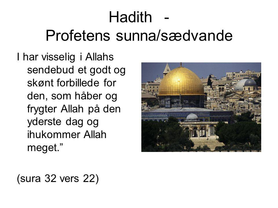 Hadith - Profetens sunna/sædvande