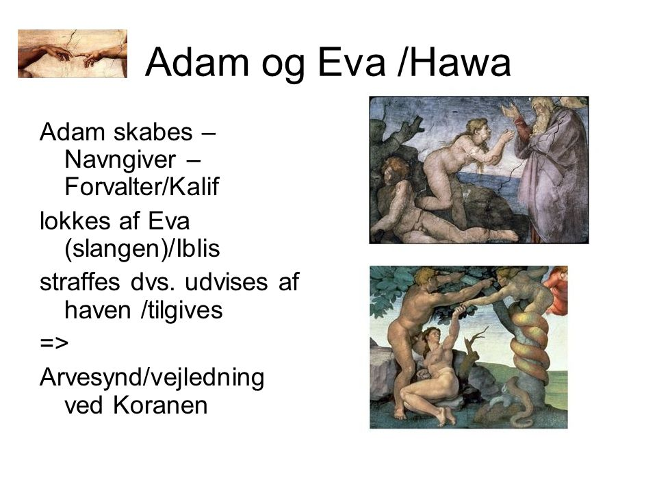 Adam og Eva /Hawa Adam skabes – Navngiver – Forvalter/Kalif