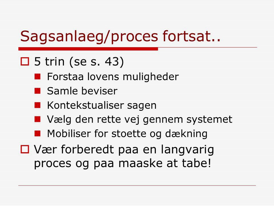 Sagsanlaeg/proces fortsat..