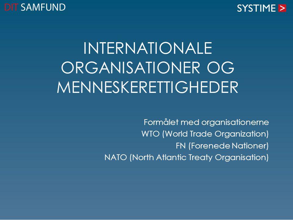 Internationale organisationer og menneskerettigheder
