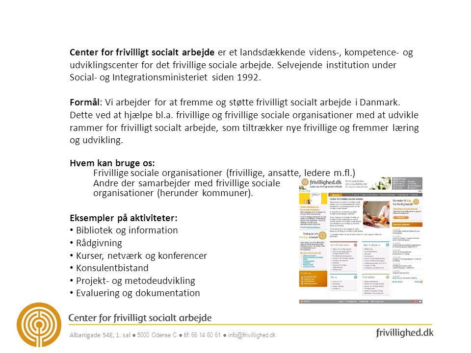 Frivillige sociale organisationer (frivillige, ansatte, ledere m.fl.)