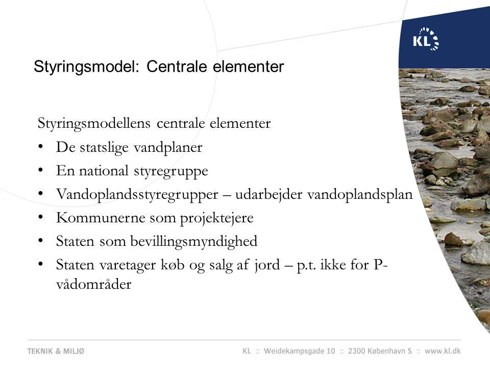 Styringsmodel: Centrale elementer