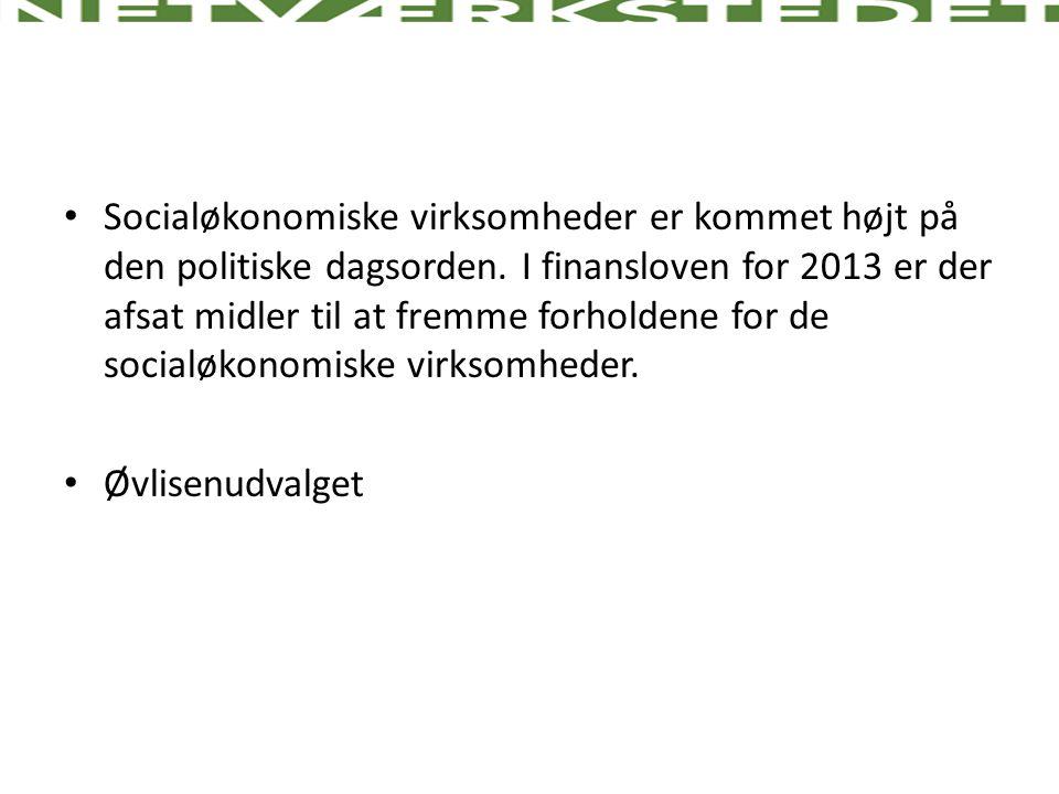 Socialøkonomiske virksomheder er kommet højt på den politiske dagsorden. I finansloven for 2013 er der afsat midler til at fremme forholdene for de socialøkonomiske virksomheder.