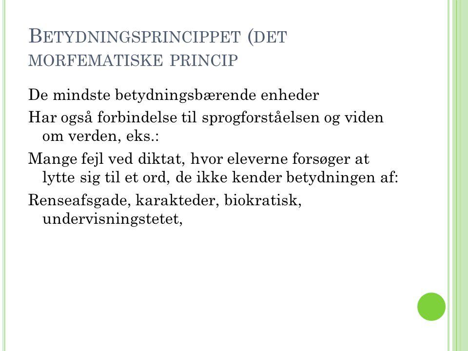 Betydningsprincippet (det morfematiske princip