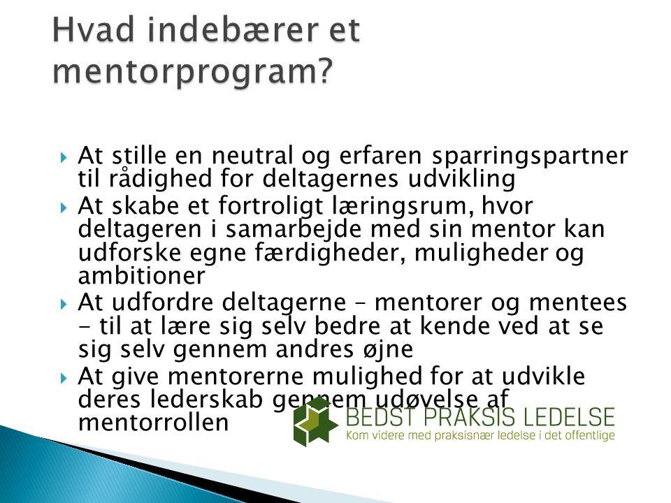 Hvad indebærer et mentorprogram