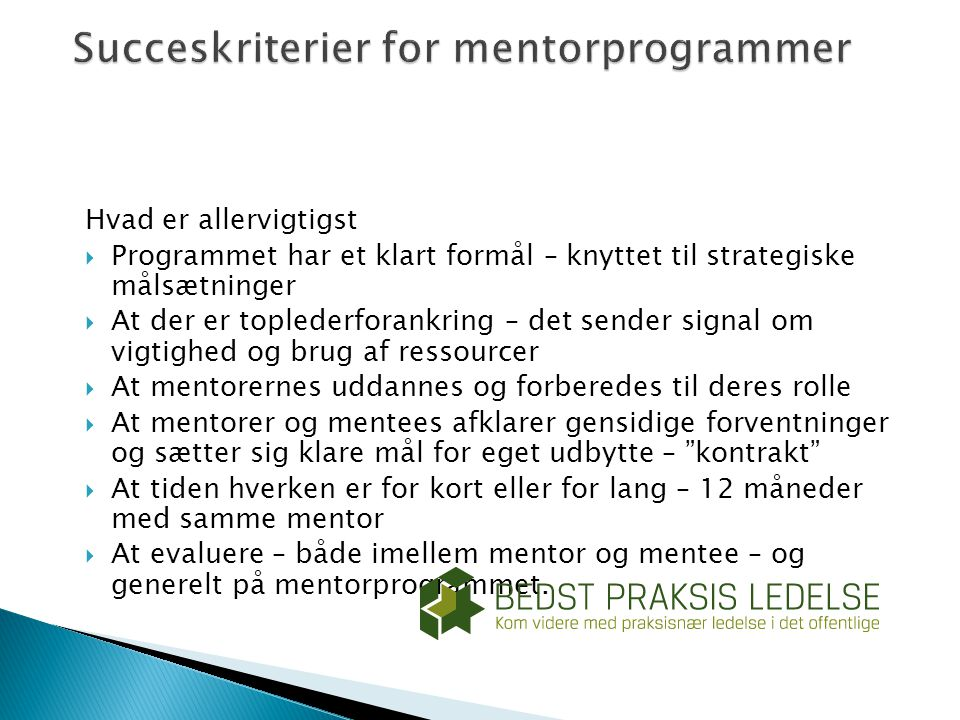 Succeskriterier for mentorprogrammer
