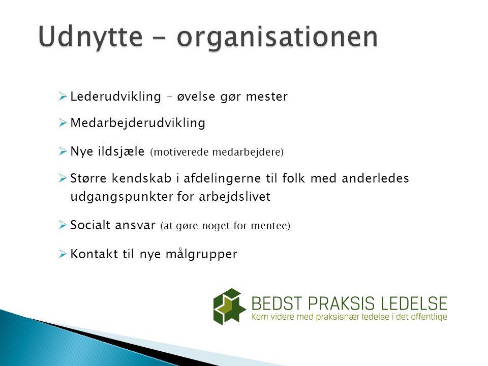 Udnytte - organisationen