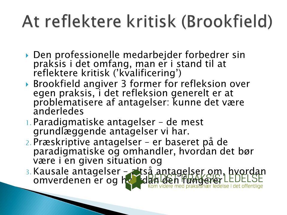 At reflektere kritisk (Brookfield)