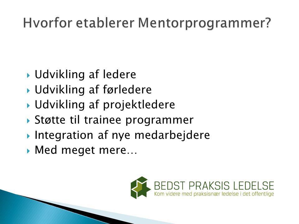 Hvorfor etablerer Mentorprogrammer