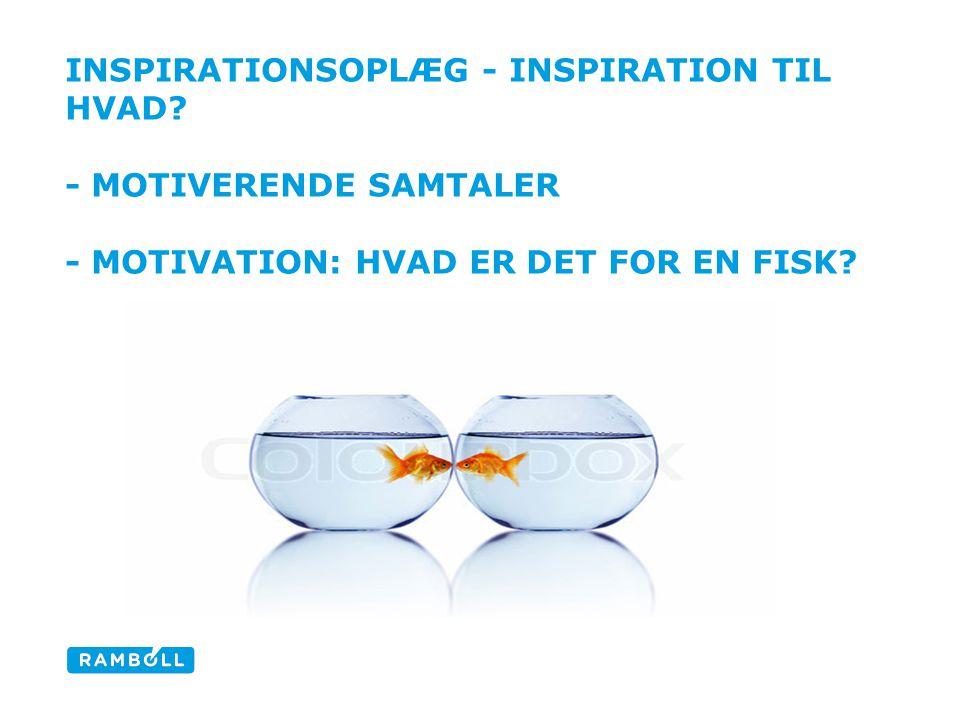 Inspirationsoplæg - Inspiration til hvad