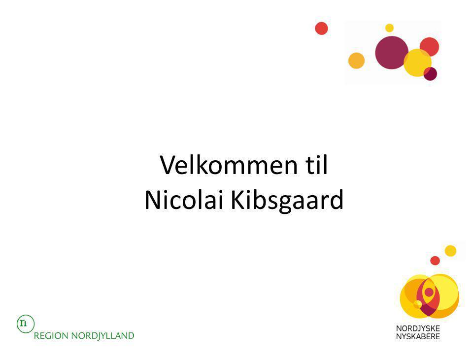 Velkommen til Nicolai Kibsgaard