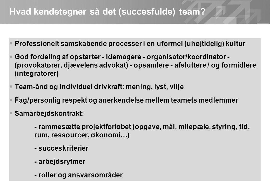 Hvad kendetegner så det (succesfulde) team