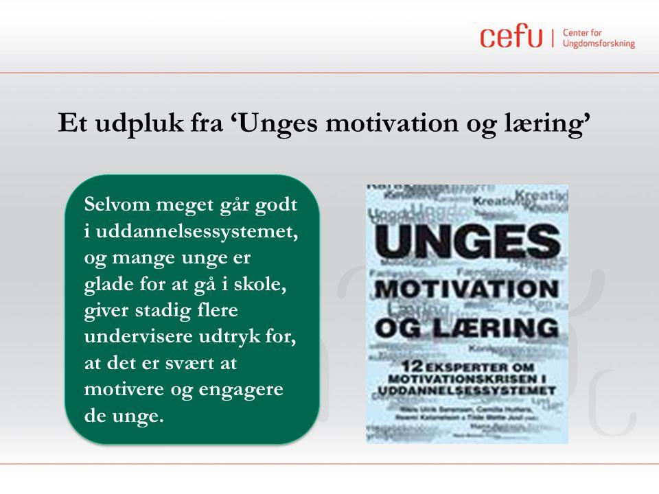 Et udpluk fra 'Unges motivation og læring'