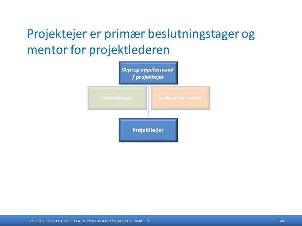 Styregruppeformand/ projektejer