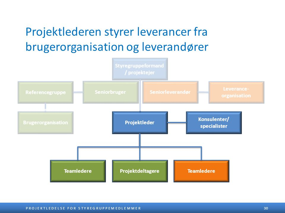Styregruppeformand/ projektejer Leverance-organisation