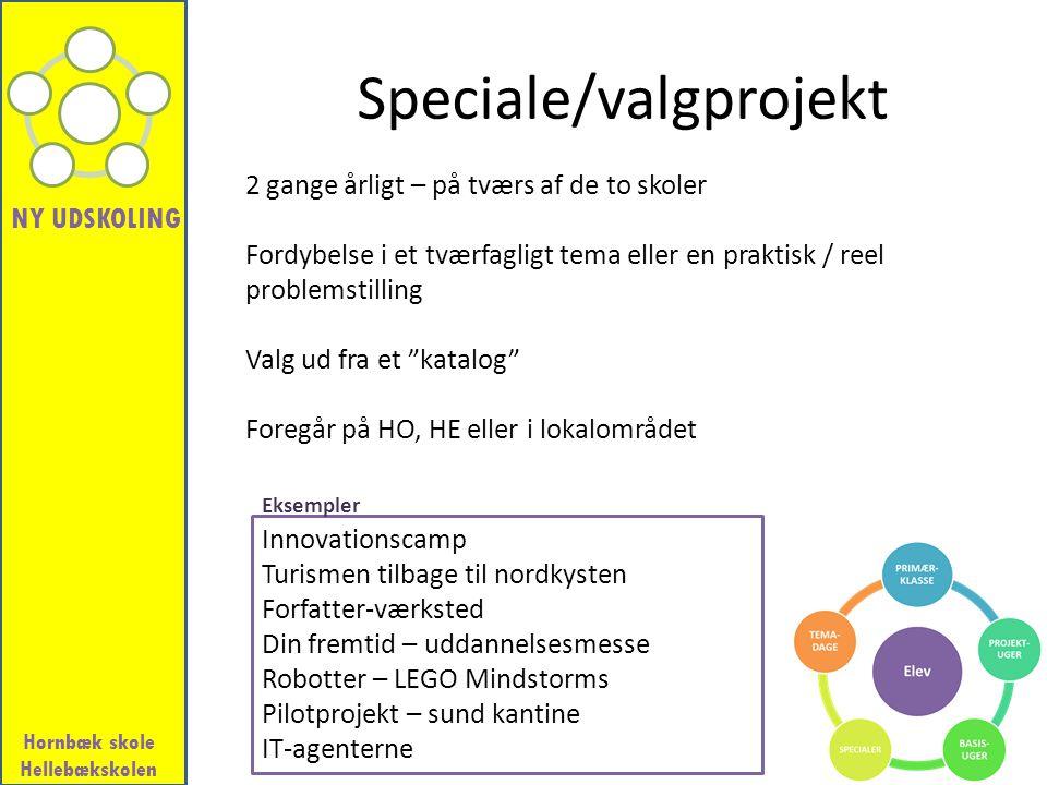 Speciale/valgprojekt