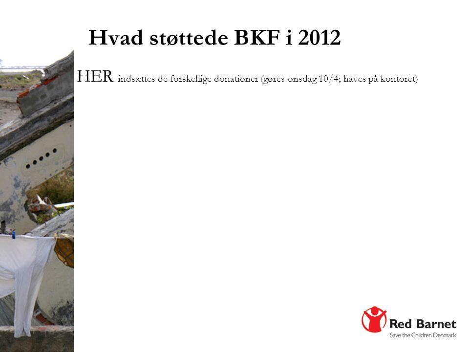 Hvad støttede BKF i 2012 HER indsættes de forskellige donationer (gøres onsdag 10/4; haves på kontoret)