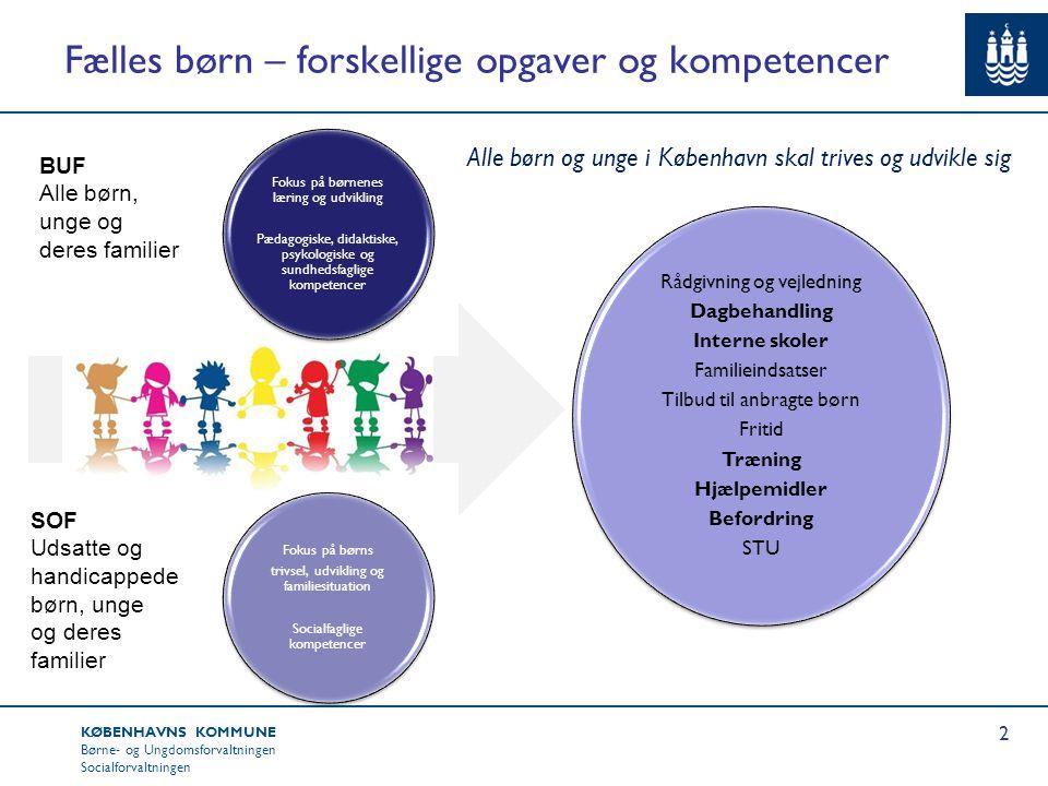 Fælles børn – forskellige opgaver og kompetencer