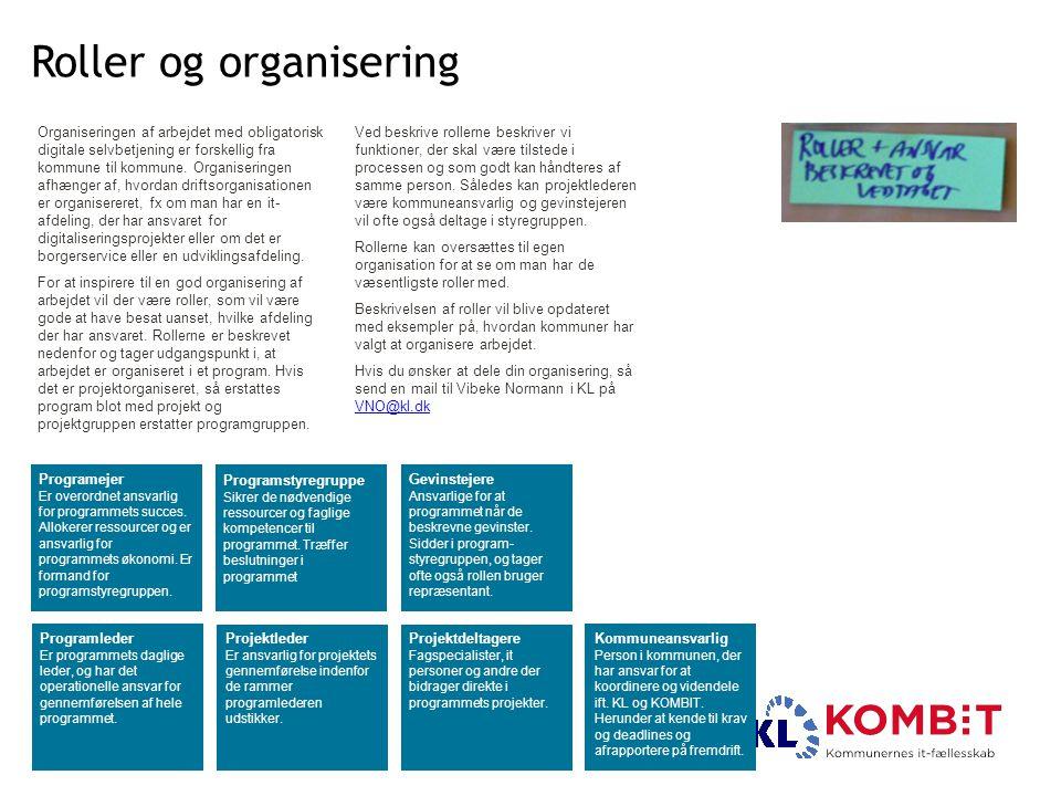 Roller og organisering