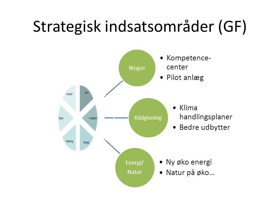 Strategisk indsatsområder (GF)