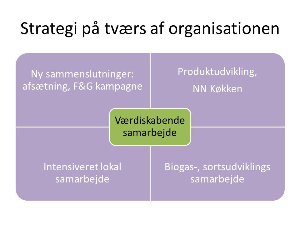 Strategi på tværs af organisationen