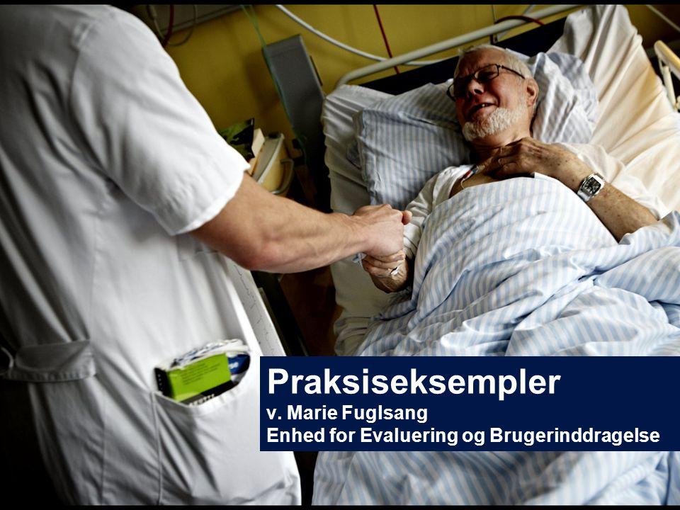 Praksiseksempler v. Marie Fuglsang