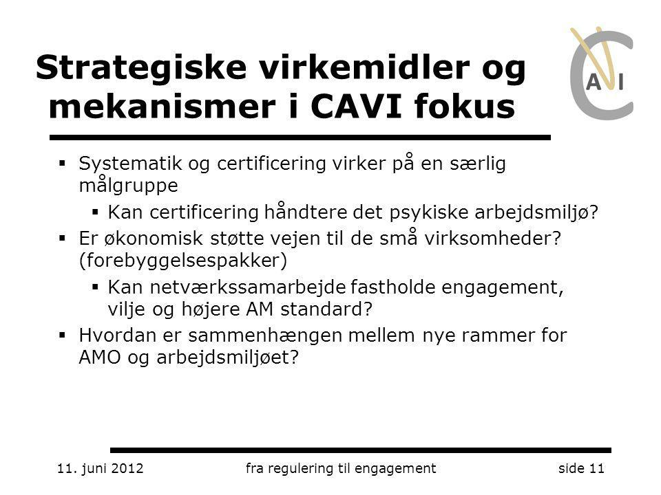 Strategiske virkemidler og mekanismer i CAVI fokus