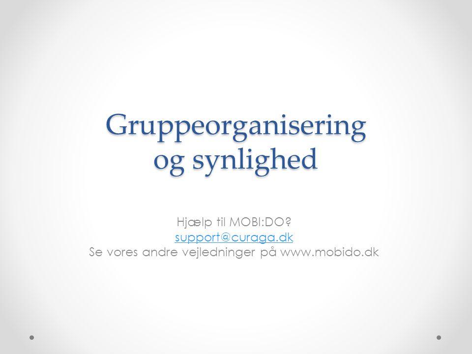Gruppeorganisering og synlighed