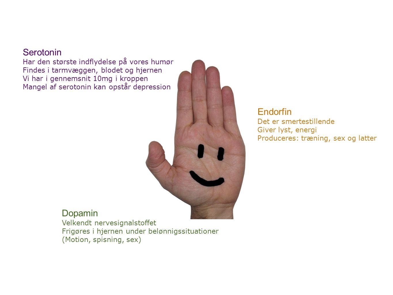 Serotonin Endorfin Dopamin Har den største indflydelse på vores humør