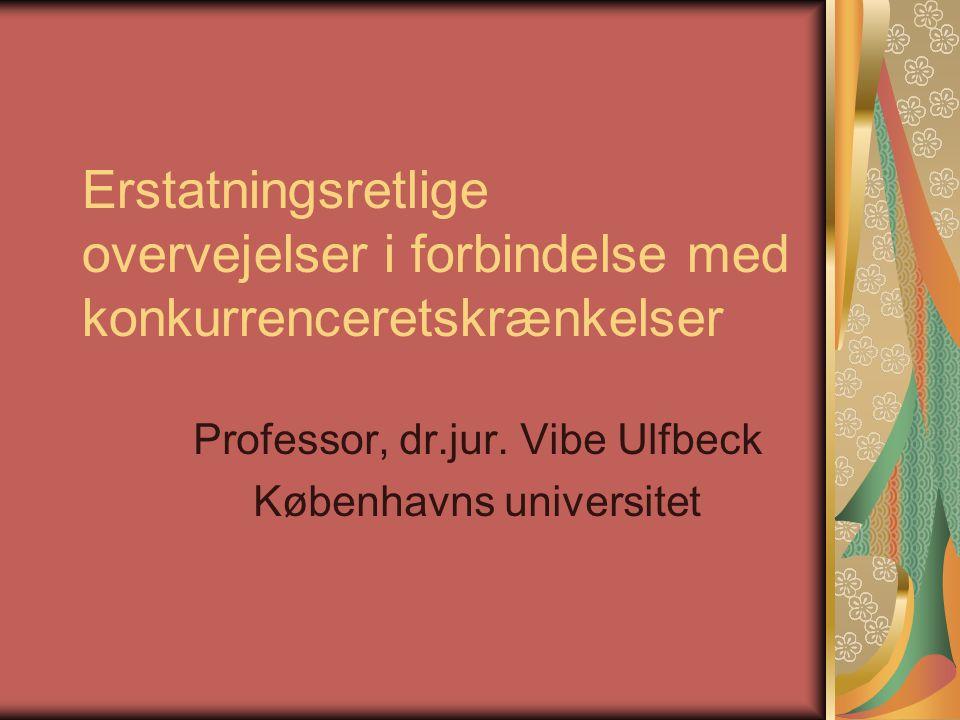 Professor, dr.jur. Vibe Ulfbeck Københavns universitet